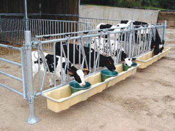 alimentatore vitelli