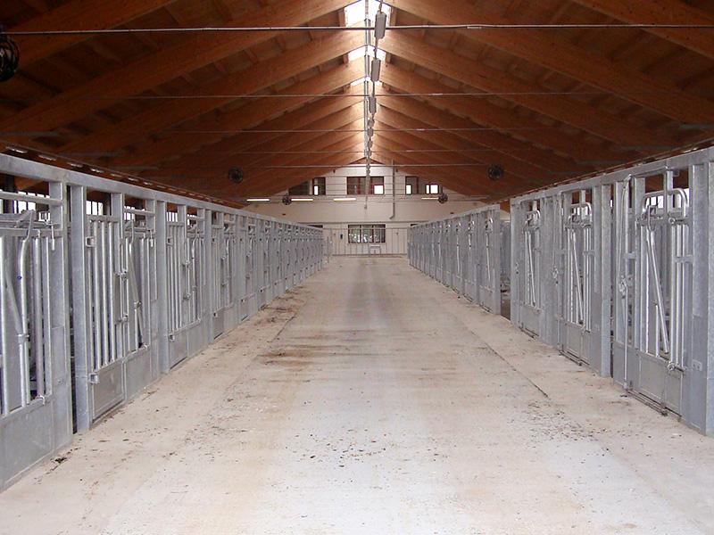 Centro tori di riproduzione